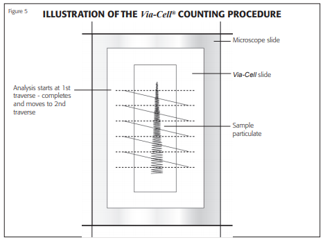 viacell counting procedure